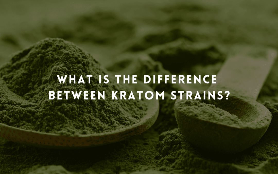 What Is the Difference Between Kratom Strains?