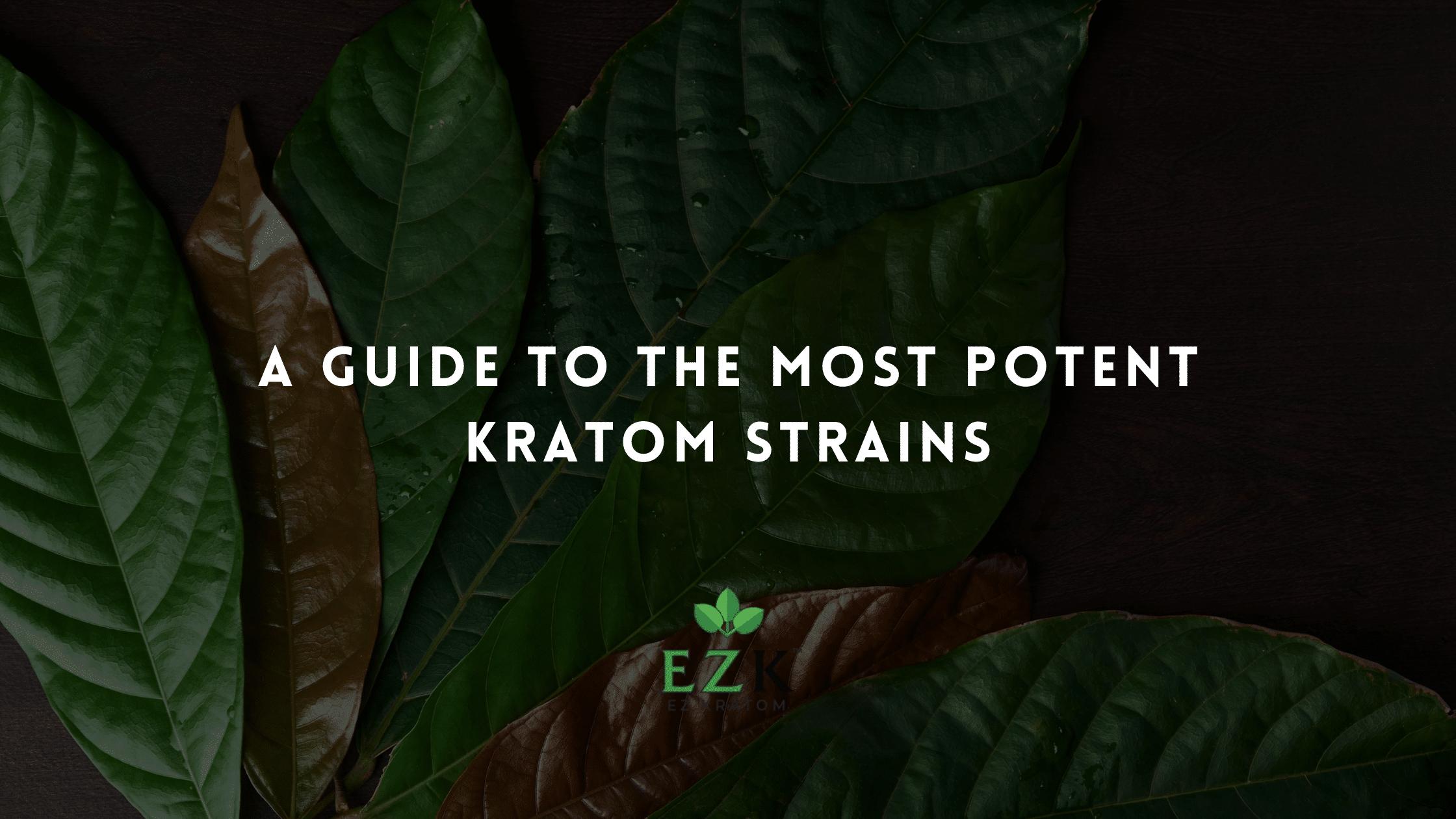 A Guide to the Most Potent Kratom Strains   EZ Kratom Wholesale