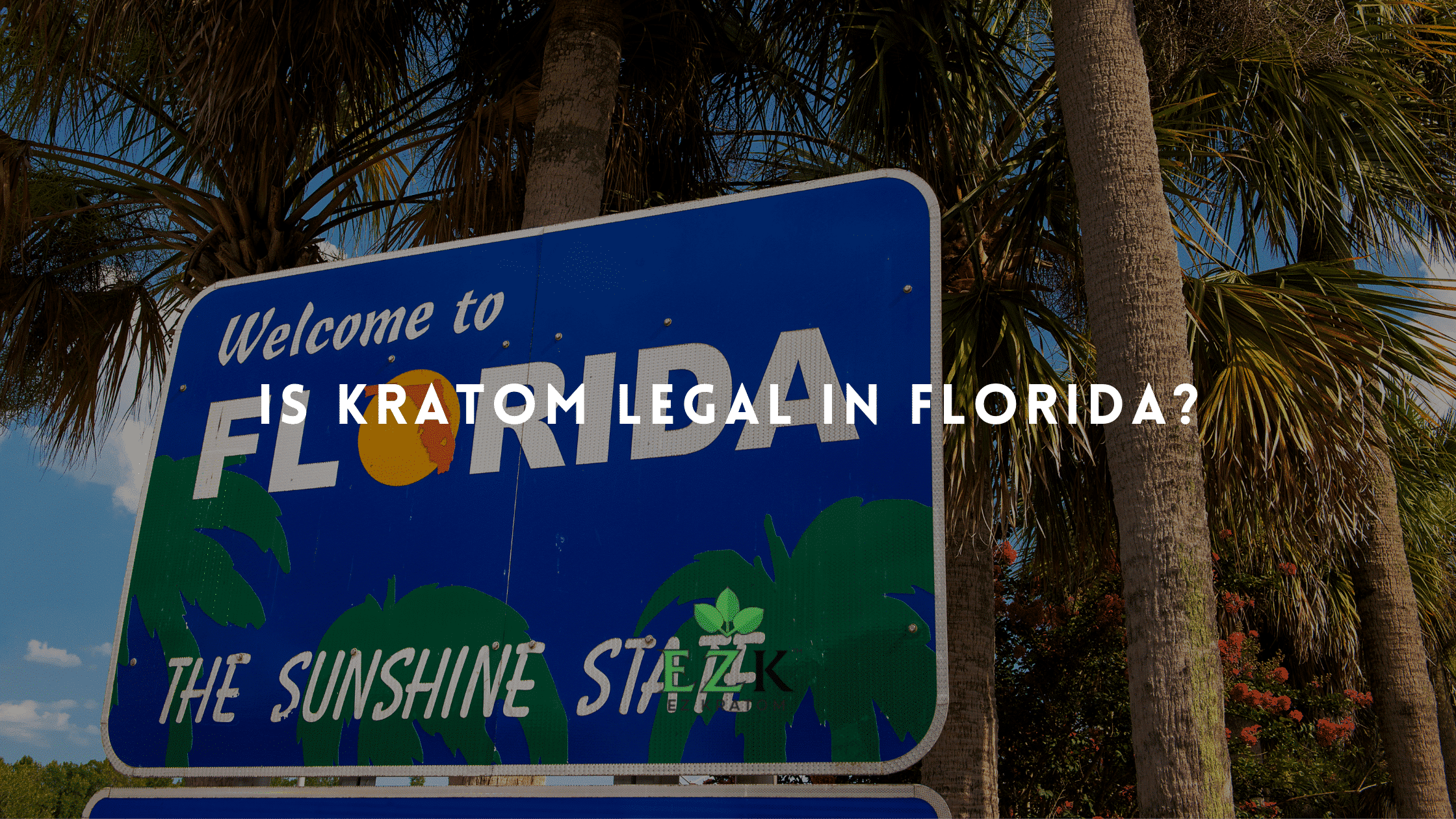 Is Kratom Legal in Florida   EZ Kratom Wholesale