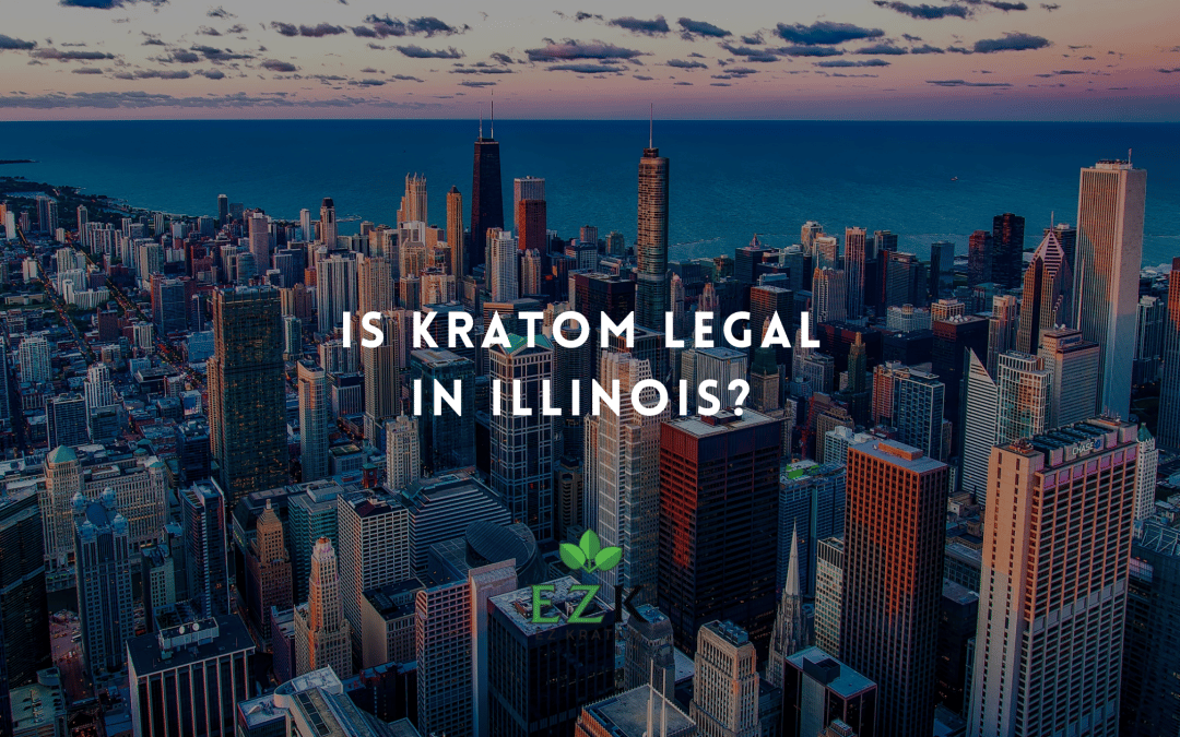 Know the Law: Is Kratom Legal in Illinois?