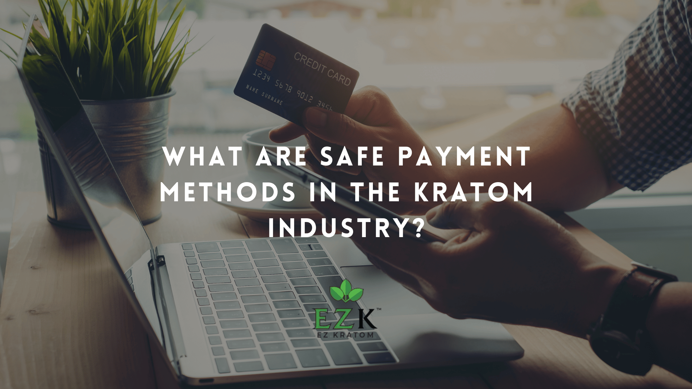 What Are Safe Payment Methods in the Kratom Industry? | EZ Kratom Wholesale