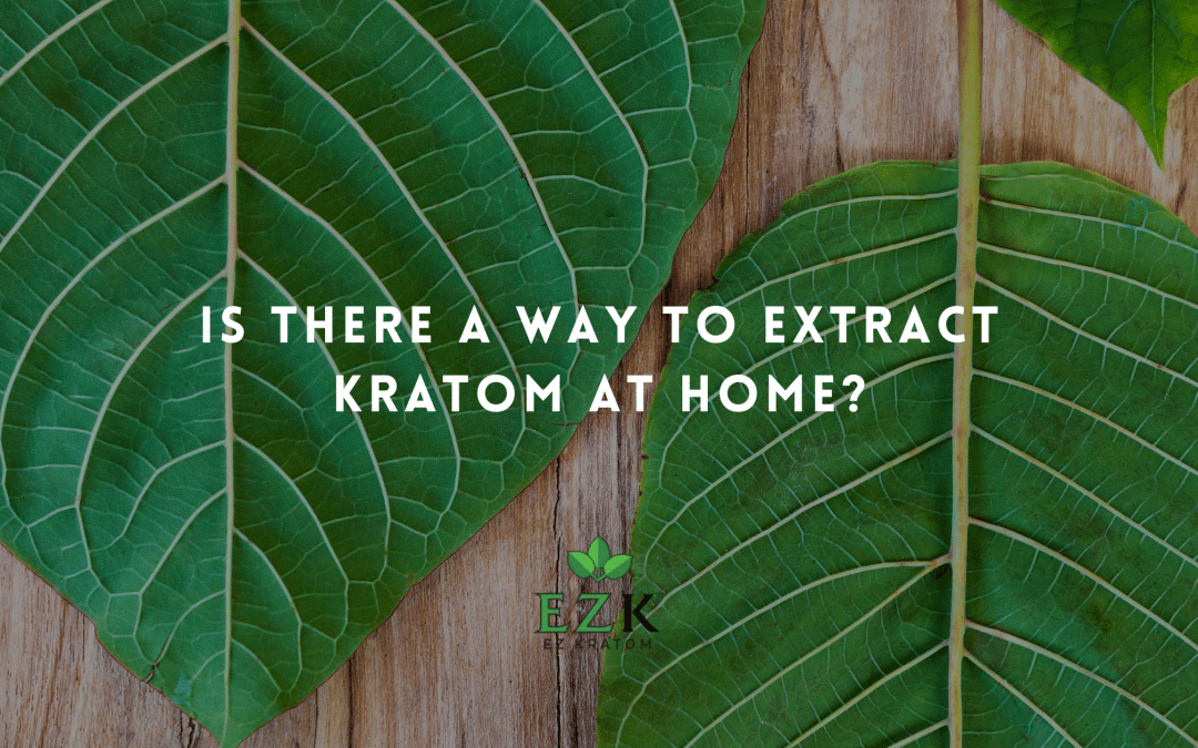 Is There a Way to Extract Kratom at Home?