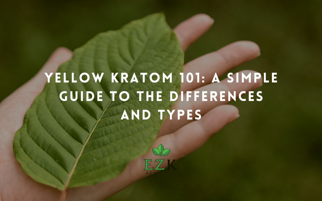 Yellow Kratom 101: A Simple Guide to the Differences and Types
