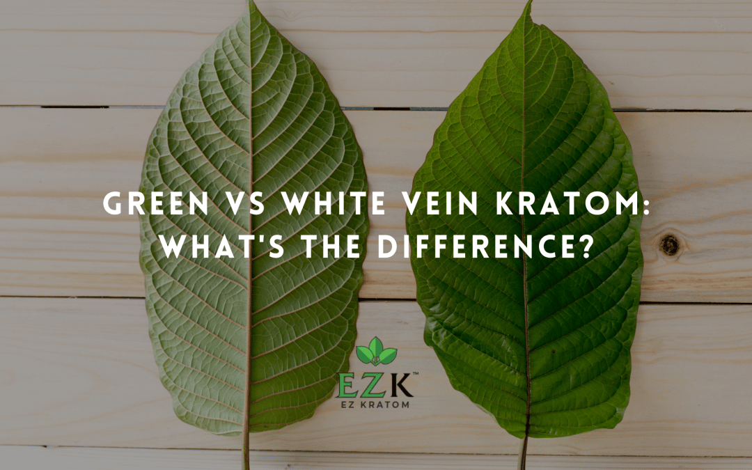 Green Vs White Vein Kratom: What's the Difference?