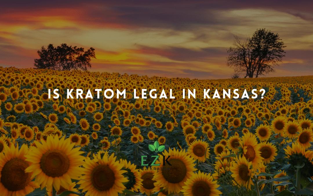 Is Kratom Legal in Kansas?