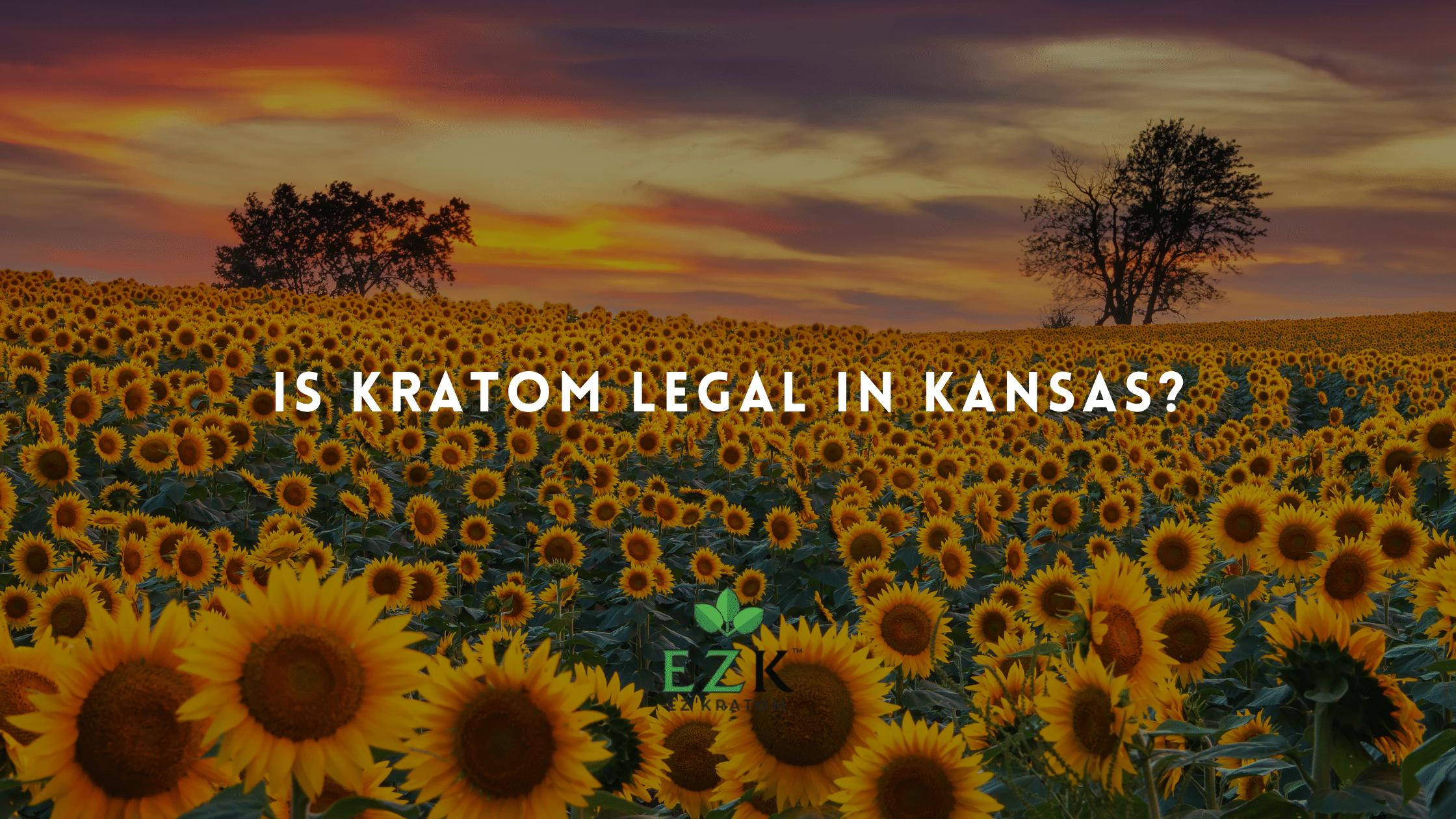 Is Kratom Legal in Kansas_