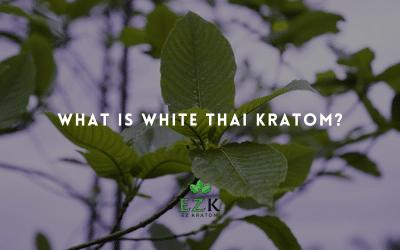 What Is White Thai Kratom?