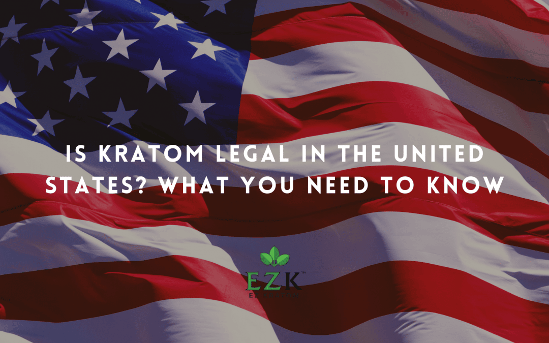 Is Kratom Legal in the United States? What You Need to Know