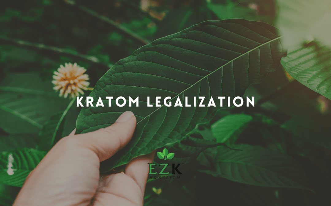Kratom Legalization: Why Kratom Should Be Legalized in All States