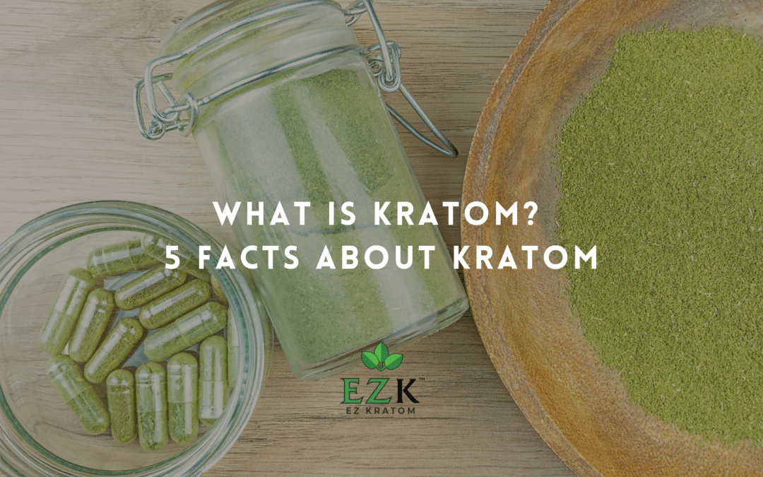 What Is Kratom? 5 Facts About Kratom