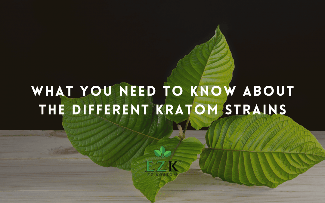 What You Need to Know About the Different Kratom Strains