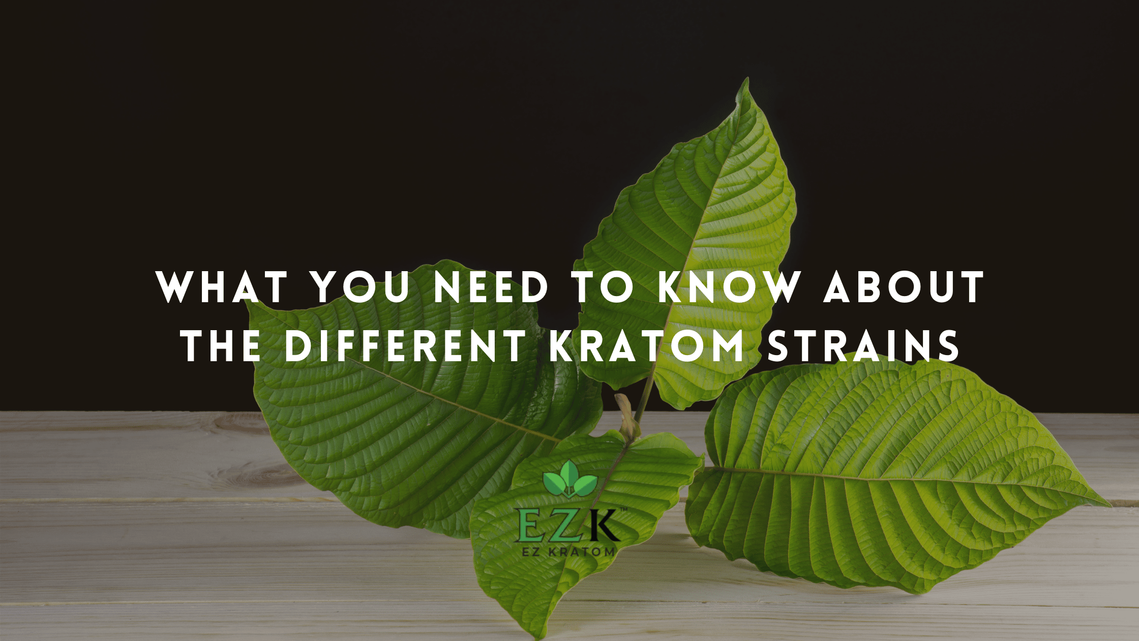 What You Need to Know About the Different Kratom Strains | EZ Kratom | What are kratom strains